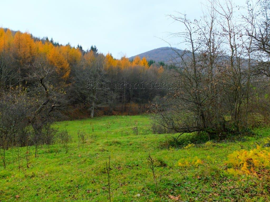 Wrzesniowka Pazdziernikowka 2014