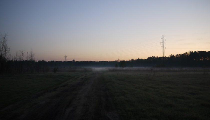 Kampinos o wschodzie słońca