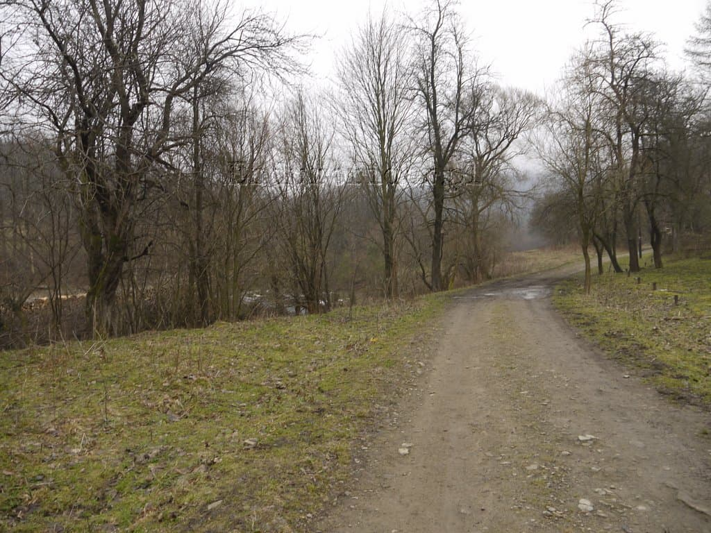 Beskidy Styczen 2014