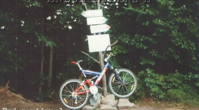 Univega flyte 930 1999